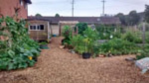 city farm 150